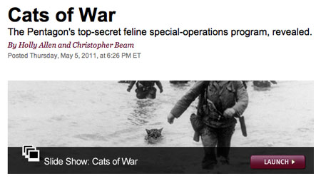 Screen shot of 'Cats of War' graphic on Slate
