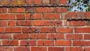 brick wall cc