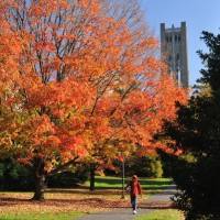 college-campus-autumn-fall