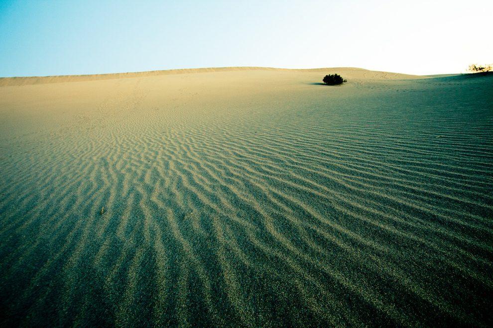 desert places analysis