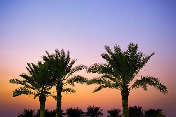 Doha sunset