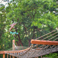 hammock_cc