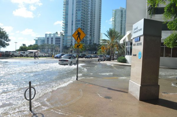 Six months in, here's how the Florida news outlets' climate change partnership is going