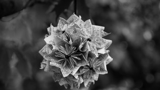 newsprint-blossom-cc