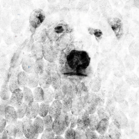 nytimes-cocacola-polar-bear-screenshot