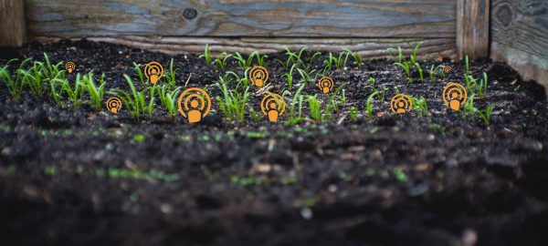 Planting seeds: The new Podfund wants to invest in early-stage podcasts