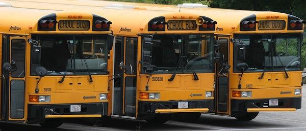 school-buses-cc