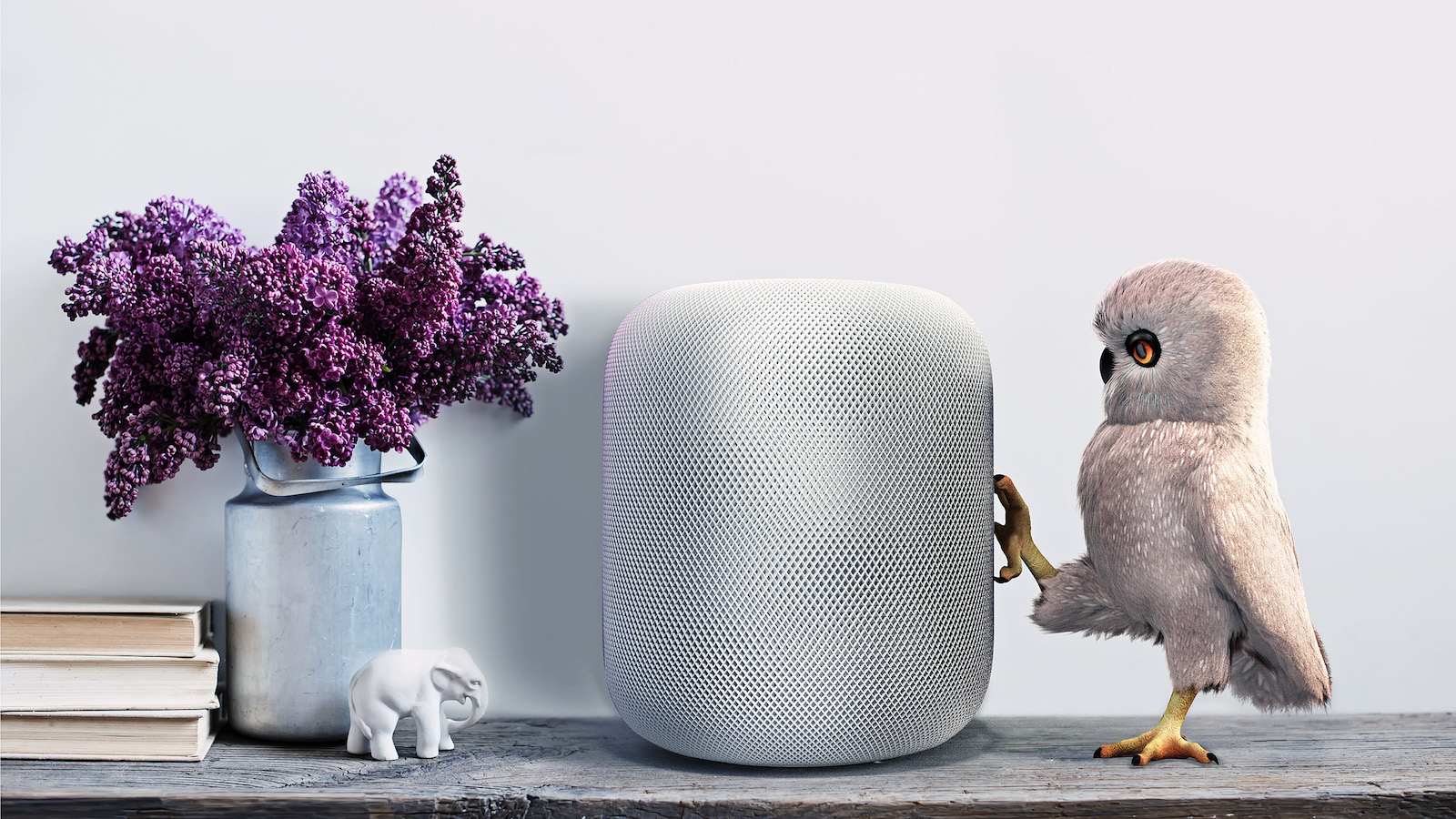 Smart speakers are on the rise  Will news grow with them