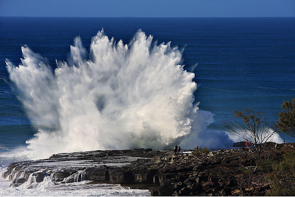wave_cc